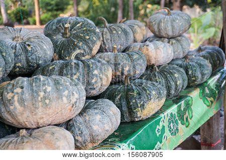 Fresh Pumpkin in the farmer market on stree