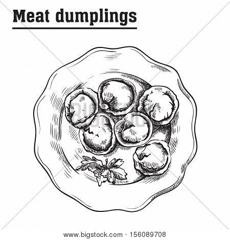 meat dumplings. ravioli. main courses. vector sketch on a white background