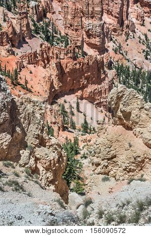 Panoramic view from Rainbow Point in Bryce Canyon National Park, Utah