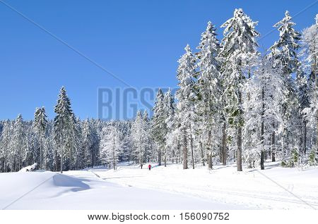 Wintertime in bavarian Forest at Arber Mountain,Bavaria,Germany