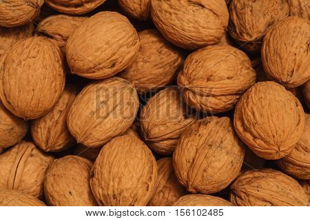 dry walnuts photo in the nutshell, circassian walnuts