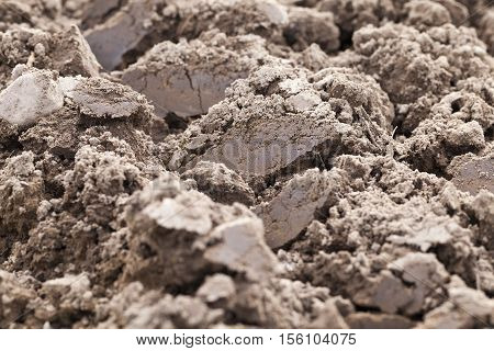 on a plowed field agricultural land intended for planting and growing food