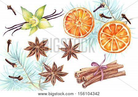 Watercolor set of christmas spice. Anise, cinnamon, vanilla, clove, orange hand painted illustration on white background