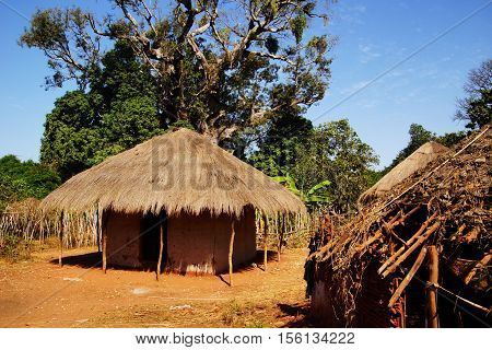 African straw hut in rain forest in Gambia West Africa