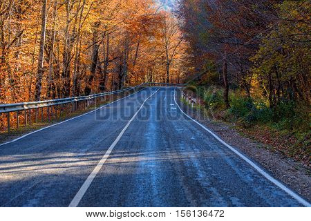 Winding road curves through autumn forest in Russia