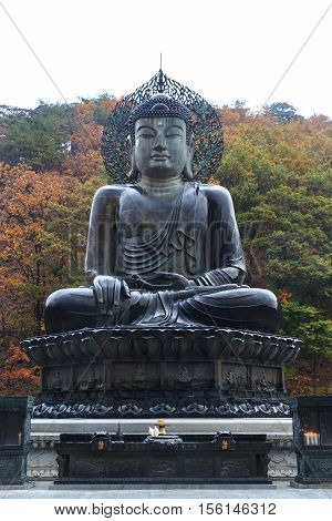 Buddha in the Sinheungsa Temple at Seoraksan National Park South Korea
