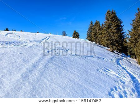 View on Mount Rigi in winter. Mount Rigi is a mountain massif of the Alps located in Central Switzerland.