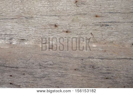 Old wooden board painted white.] with wall pattern texture background