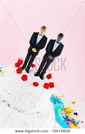 homo sexual grooms wedding