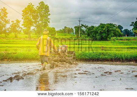 Thai Farmer using tiller tractor in rice field with sunlight
