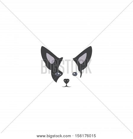 Vector illustration of chihuahua dog in flat style. Chihuahua flat icon.