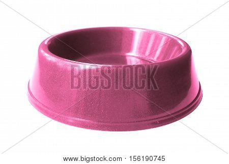 Cat , dog rodent feeding pink bowl, isolated on white background