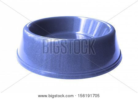 Cat , dog rodent feeding blue bowl, isolated on white background