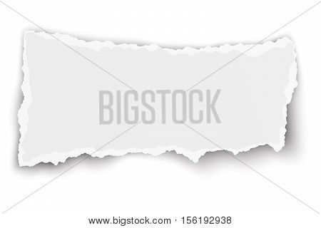 White vector elongate paper tear with soft shadow isolated