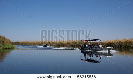 Okavango Delta, Botswana - July 2016 :Touring Okavango Delta by boat