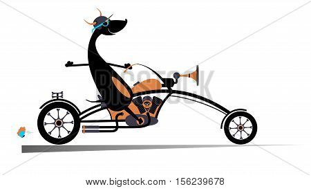 Cartoon biker dog. Biker, motorcycle, dog, illustration