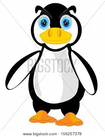 Vector illustration animal penguin on white background