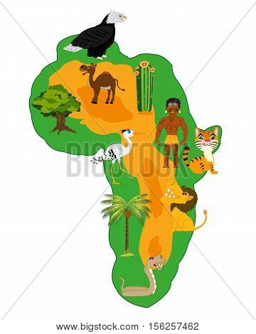 Living nature and plants of the continent africa on white background
