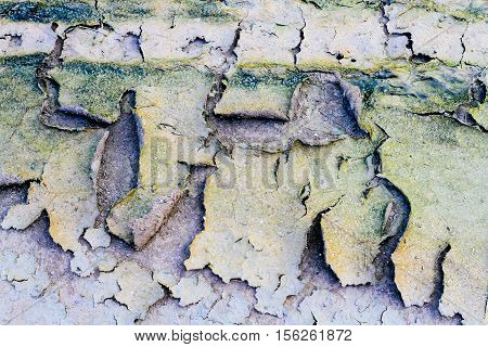 ground dirty cracks dirt structure earth abstract background