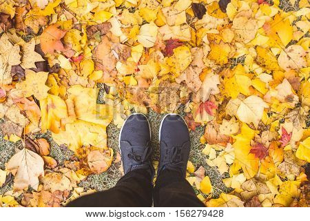 Top View of Man entering the fall season standing in dry autumn leaves.