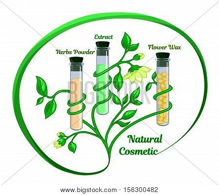 Conceptual illustration depicting the test tube with natural ingredients such as extract, floral wax and herbal powder