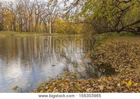 A reflective river landscape in the fall.