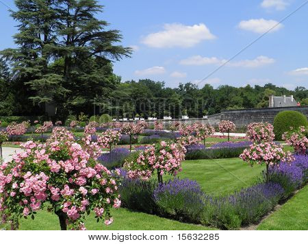 Garden at Chenonceau Chateau