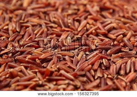 Red rice close-up background. Heap wild brown unpolished rice for vegetarians. poster