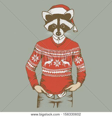 Raccoon vector illustration. Raccoon in human sweater, sweatshirt and Santa hat