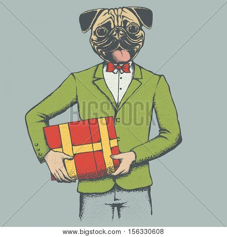 Pug dog vector illustration. Pug dog in human suit. Adorable Chinese pug dog with gift