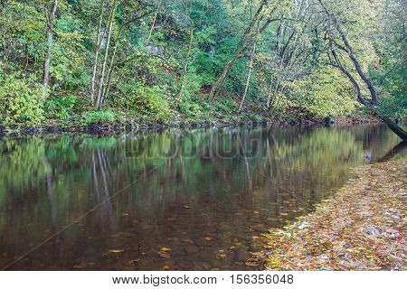 Autumn on the River Ure near Aysgarth Falls in the Yorkshire Dales National Park. The falls are a popular tourist spot. At 74 miles long it is the principal river of Wensleydale, famous for cheese.