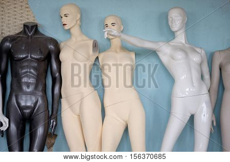 The Dummy Of Mannequin