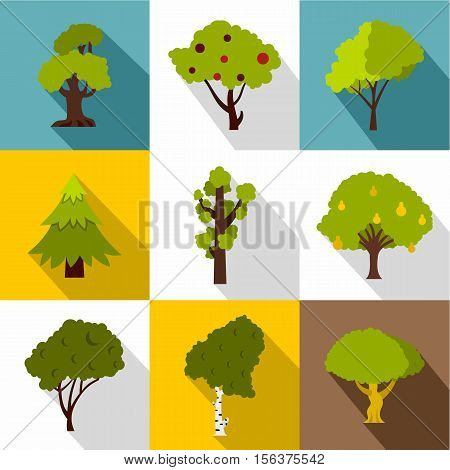 Woody plants icons set. Flat illustration of 9 woody plants vector icons for web