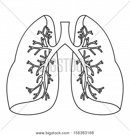 Lungs icon. Outline illustration of lungs vector icon for web