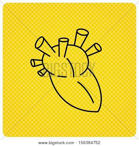 Heart icon. Human organ sign. Surgical transplantation symbol. Linear icon on orange background. Vector