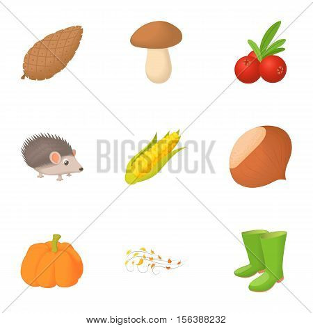 Falling leaves season icons set. Cartoon illustration of 9 falling leaves season vector icons for web