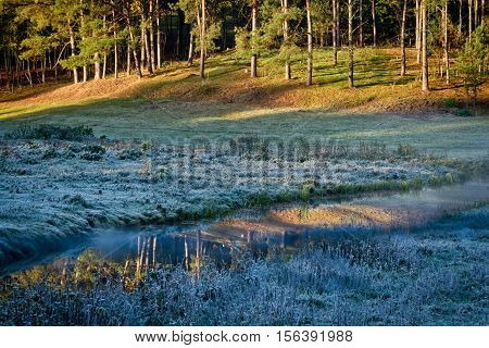 Stunning sunrise at frozen meadow in fall