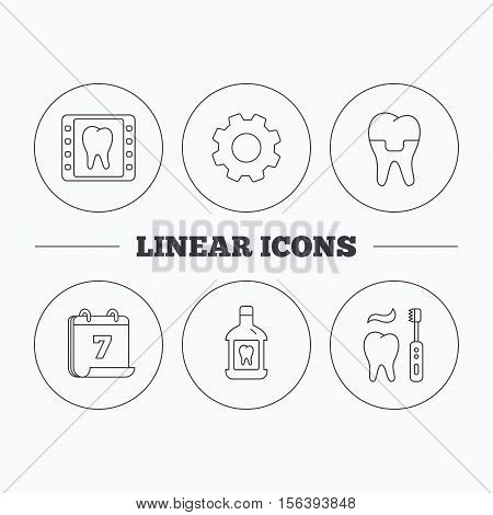 Dental crown, x-ray and brushing teeth icons. Mouthwash linear sign. Flat cogwheel and calendar symbols. Linear icons in circle buttons. Vector