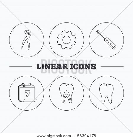 Tooth, electric toothbrush and pliers icons. Dentinal tubules linear sign. Flat cogwheel and calendar symbols. Linear icons in circle buttons. Vector