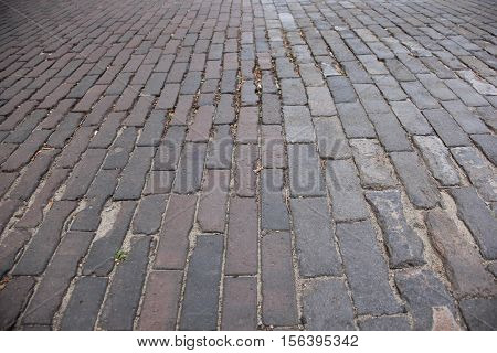A brick paved road in Traverse City, Michigan
