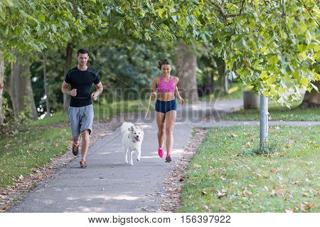 young caucasian couple with husky dog running in autumn park, couple jogging together