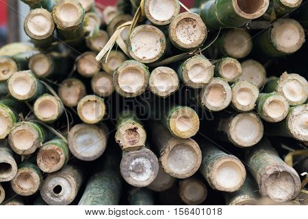 A pile of natural bamboo tree in factory