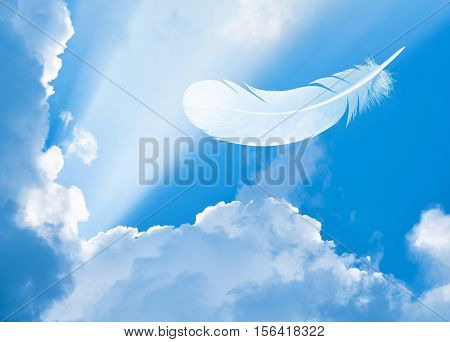 Feather in sky among clouds and sun beams