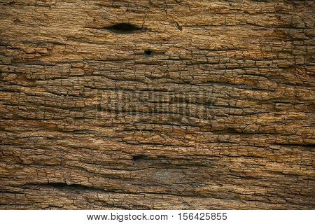 Old wood background from old home. Corrosion of base or ceiling in interior of home. Corrosion of wooden background and empty area for text. Wooden for background of food raw in kitchen room.