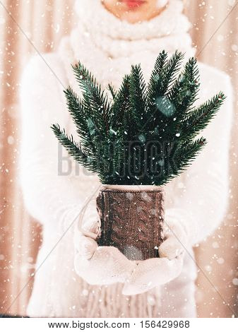 Woman holding knitted cup with nice Christmas firtree bouquet close up on light background with snowfall. Hands in woolen gloves holding a cozy mug with Christmas decoration. Winter concept.