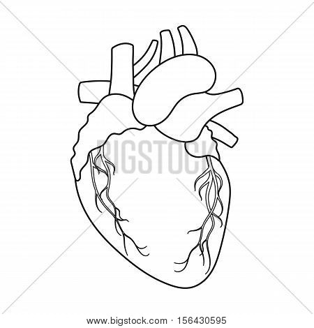 Heart icon in outline style isolated on white background. Organs symbol vector illustration.