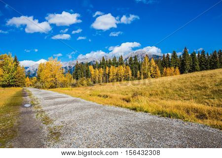 The concept of recreational tourism. Bright shining autumn day in Canmore, near Banff National Park. Walking a dirt trail in the park