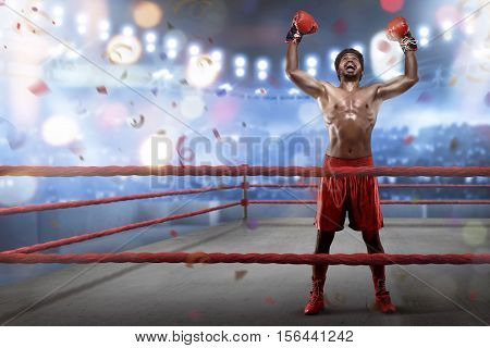 Cheerful Asian Young Boxer Is Celebrating His Winning
