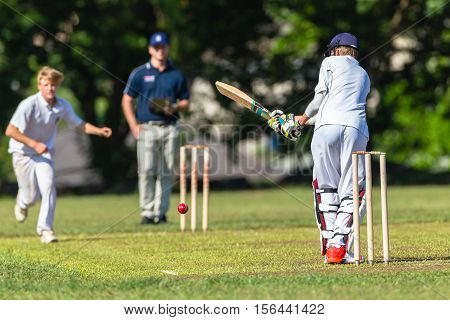 Cricket Action Schools