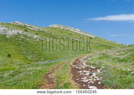Chatyr-Dah mountainous massif in Crimea at spring season.